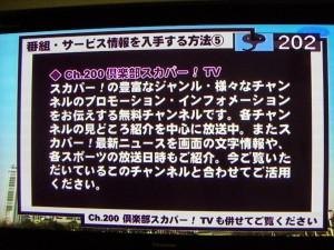 スカイサービスのプロモーションチャンネル受信画面